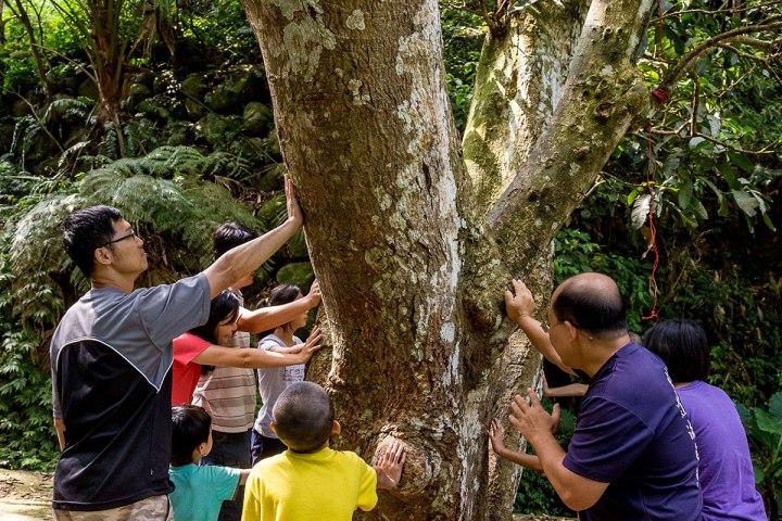 02攀樹前要進行圍樹祈福,表達崇敬自然的心意。