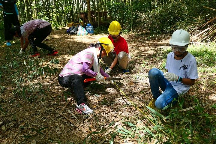 03參加自然谷工作假期的志工,為竹林疏伐作林地整理。(圖片提供|自然谷)