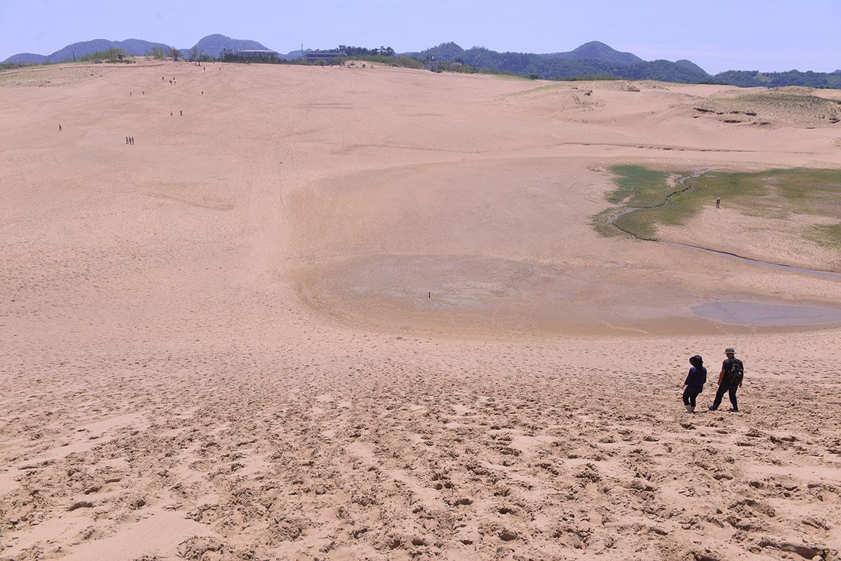 04_鳥取砂丘