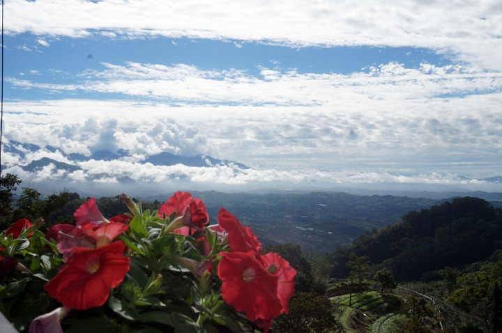 05.清晨與傍晚時分的雲也居一,雲霧景緻另有一番浪漫之美。(圖片提供|雲也居一)
