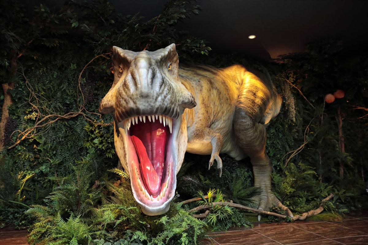 04.每間店都有不同的「迎賓」恐龍在等你。