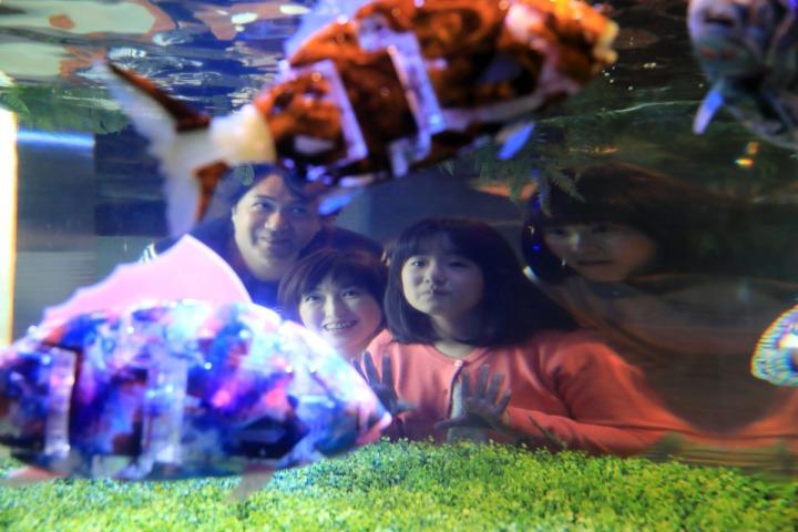 05.舞濱東京灣店裡的一角,連水族箱裡都是機器魚。