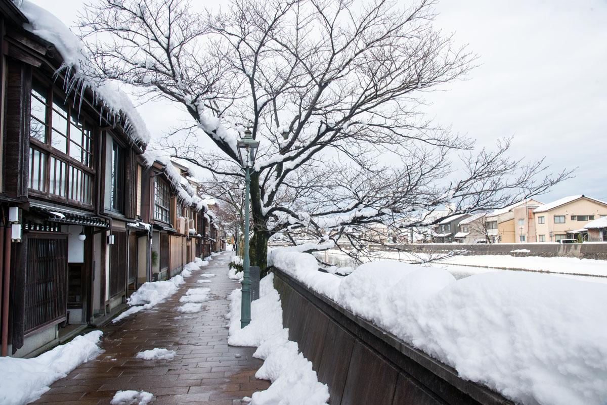 4.冬天時到這裡,是一片白色與老屋搭配的美風景。